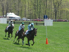 in hot pursuit (tiphony) Tags: horses races horseraces foxfield