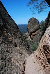 Pinnacles 2009 077