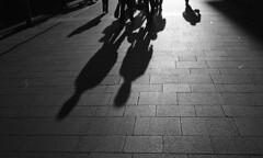 Shadowland (Anthony Cronin) Tags: ireland dublin sun film analog 35mm cityscape shadows ishootfilm ac agfa apug negativescan tones ilford irlanda ilfordpanf urbanlife panf longshadows dubliners ilfordpanf50 studional dublinstreet sillouttes konicaautos3 eveningshadows realireland dublinstreets allrightsreserved dublinlife streetsofdublin irishphotography lifeindublin agfastudional sunwinter irishstreetphotography eldocumental hexanonlens dublinstreetphotography streetphotographydublin anthonycronin filmisntdeaditjustsmellsfunny filmdev:recipe=5206 fotografadelacalle streetscapeselongated shadowsetting livingindublin insidedublin livinginireland streetphotographyireland callededubln photangoirl
