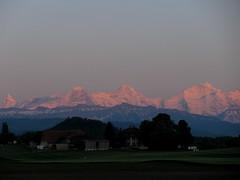 Finsteraarhorn - Eiger - Mönch - Jungfrau in den Alpen - Alps im Berner Oberland im Kanton Bern in der Schweiz (chrchr_75) Tags: hurni christoph schweiz suisse switzerland svizzera suissa swiss kanton bern berne berna chrchr chrchr75 chrigu chriguhurni 0905 finsteraarhorn eiger mönch jungfrau jungfraujoch silberhorn sigriswiler rothorn geyerhorn nordwand nortface top europe sunset sonnenuntergang berge mountains alpen alps abendrot schnee snow neige bergeiger albumeiger berg mountain gross fiescherhorn fiescherhörner mai 2009 albumzzz200905mai albumjungfrau kantonbern viertausender montagne montagna albumfinsteraarhorn berner oberland albumdreigestirneigermönchjungfrau dreigestirn