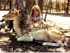 i've always loved animals (loweryjes) Tags: nature animal neck long natural deer longneck lowery ashowoff loweryjes