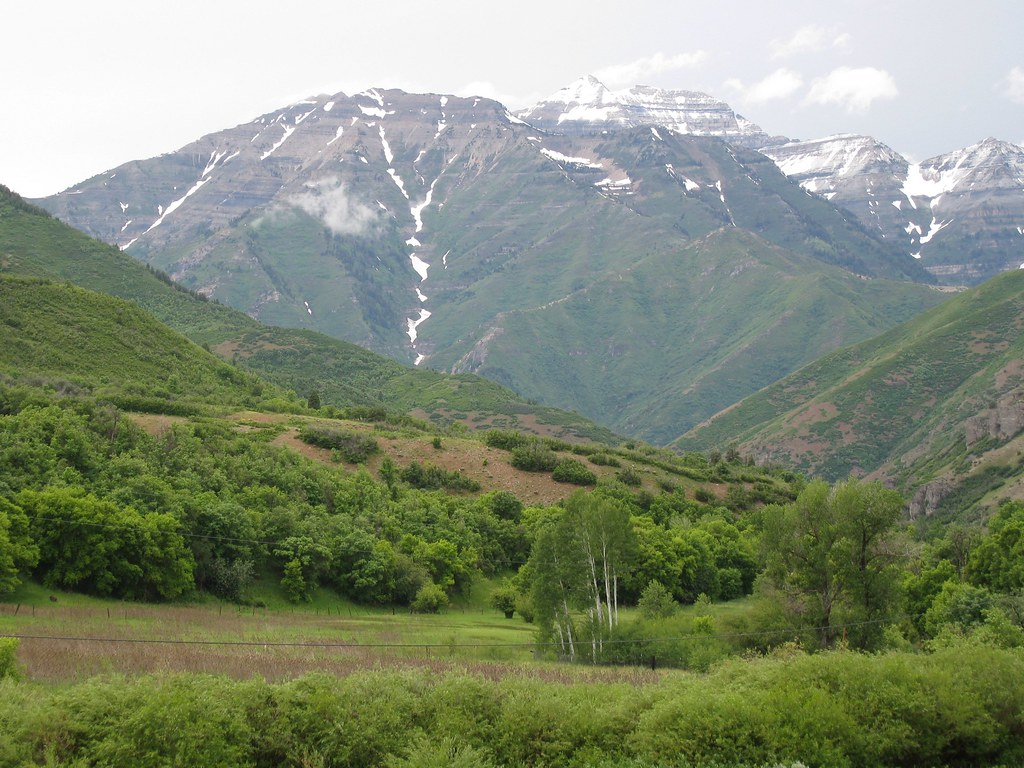 Mt. Timpanogos from South Fork Canyon