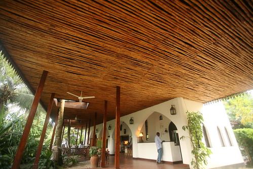 pine tree ceiling