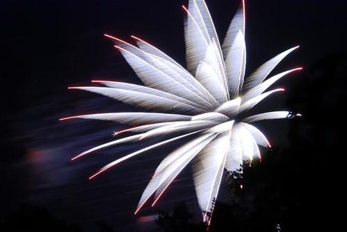 Fireworks2009-9