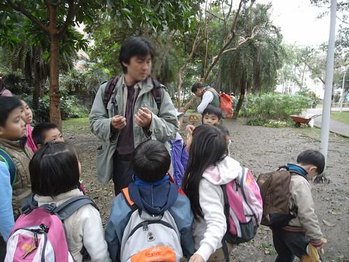 你拍攝的 59娃在老師耳邊示範找到的蕨類玩法。