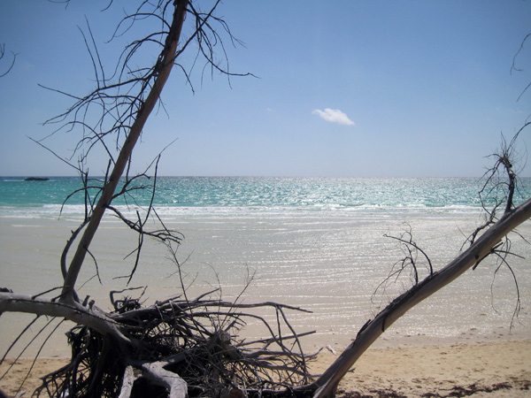 Lucaya National Park Beach