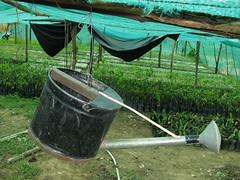 Cambodia Farm Asia (hn.) Tags: copyright asia asien cambodge cambodia heiconeumeyer kambodscha seasia soasien southeastasia sdostasien kep farm farming landwirtschaft wateringcan gieskanne wateringpot copyrighted