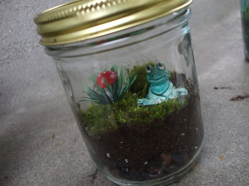 making terrariums with Diane