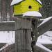 Rochford Birdhouse