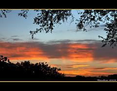 ~~~The Sunset has Eye's~~~ (~~~Gasssman~~~) Tags: fabulous wmp twop mywinners abigfave proudshopper goldstaraward cffaa daarklands