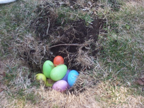 Egg hunt 7