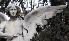Ángel_01 (Bellwizard) Tags: barcelona cemetery graveyard angel cementerio montjuïc ángel cementiri àngel