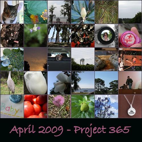 April 2009 Project 365-1