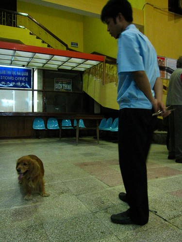 Vietnamese drug sniffing dog and handler at Dong Dan train station, Chinese border. April 28, 2009