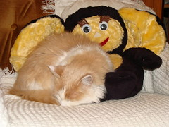 Cheburashka & Molly