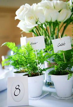 Green Wedding Centerpieces Ideas