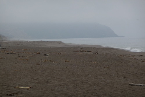 Point Reyes Beach North 1