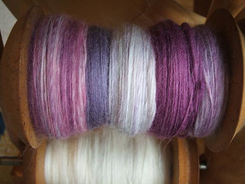 The Thylacine sock fibre in Hartzview