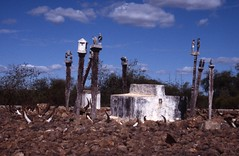 img10107 (Gareth's Pix) Tags: madagascar tombs mahafaly