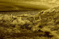 Sandy Dune Gate...* (Harvey Dogson) Tags: uk england beach bestof northwest best explore cumbria barrow flikcr morecambebay amymit mjgbest atomicaward theartlair gold22 gold222 gold2222 hgold22