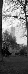 Cologne Vertical 4 (betablogga) Tags: bw white black deutschland cologne köln schwarz weis vertikal verticalgermany