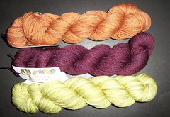 Sundara Sock Yarn - March 09