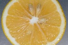meyer lemon cut