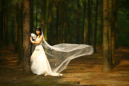 Quân - Vi Wedding