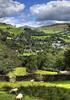 England: Cumbria, Across Ambleside (Tim Blessed) Tags: uk trees sky nature landscapes countryside scenery lakedistrict cumbria singlerawtonemapped goldstaraward