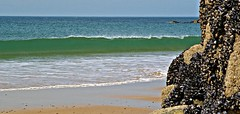 ~ Peekaboo.....!!! ~ (Jaep Kees Reitsma) Tags: sea france beach 22 stones wave bretagne breizh frankrijk mussels moules bzh mosselen cotesdarmor brittanyfrance concordians jacquescorneille capfréhel