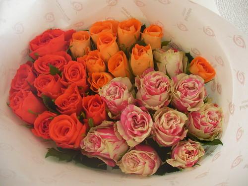 誕生日に届いたバラ
