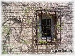 Windows of Toledo (I) (JaySea Runner) Tags: window ventana spain bladerunner toledo concordians flickriver fotoventana photowindow dwwg