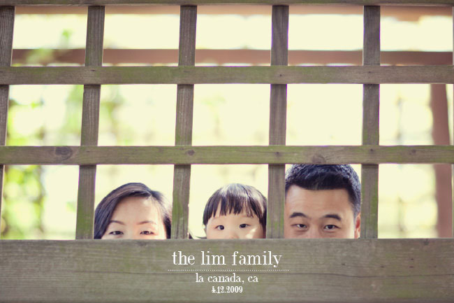 the lim family