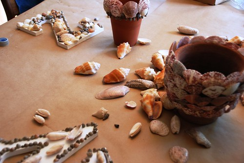 Seashells and terra cotta
