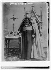 essay on catholic reformation