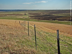 Tallgrass Prairie National Preserve, 21 April 2009 (photography.by.ROEVER) Tags: trip vacation fence spring roadtrip april kansas prairie 2009 barbedwirefence flinthills tallgrassprairie chasecounty tallgrassprairienationalpreserve