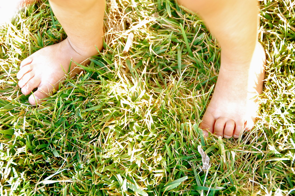 toesies in the grass
