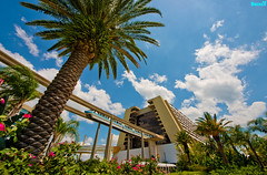 The Tempo Bay Resort (Tom.Bricker) Tags: wideangle disney disneyworld mickeymouse waltdisneyworld waltdisney ultrawideangle disneyphotos disneyphotography wdwfigment tombricker