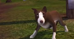 Sims 3 Pets 10