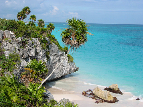 nature beach sea rocks Mexico palm blue green paradise favorites
