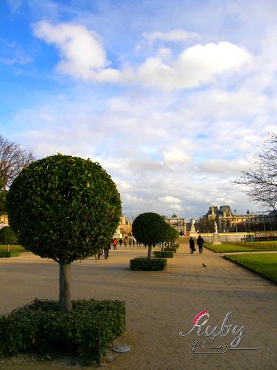 palais royal musee du louvre