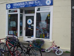 Sheelagh na Gig (by: thevillage.ie)