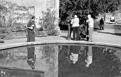 Fountain pool (Richard Holden) Tags: england people blackandwhite reflection film water fountain pool unitedkingdom strangers ilfordhp5 oxford scanned botanicgarden oxfordshire epsonperfection4490 dopplr:explore=jm81