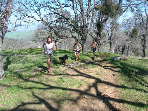 Climbing the Ohlone Trail