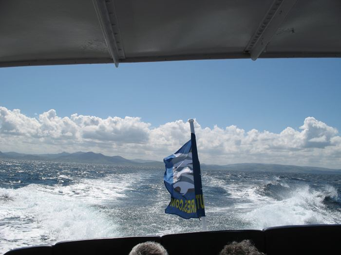 View from Turmares whale-watching boat