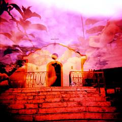você não precisa pedir licença... (gleicebueno) Tags: sky flores flower color film cores holga xpro doubleexposure religion dream multipleexposure igreja ceu fé sonhos c41 religiao multiplaexposicao