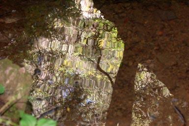 2sky-reflected.jpg