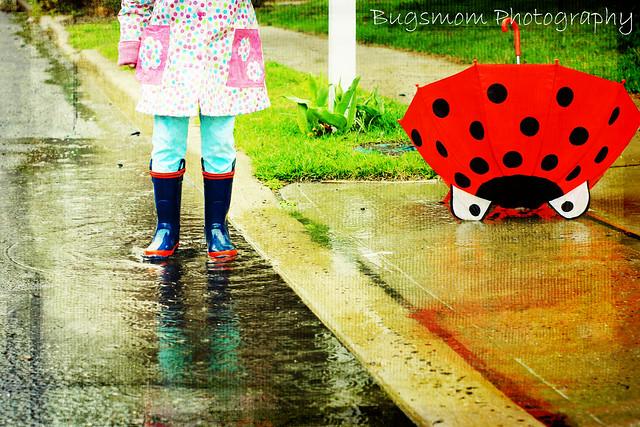Rain puddle...