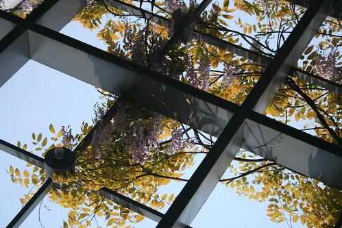 20090405蘇州博物館
