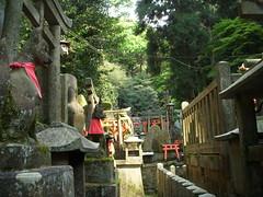 DSCN4170.JPG (Derek Ryan) Tags: travel japan tokyo kyoto    osaka nara kansai  nihon  atagawa    kantou